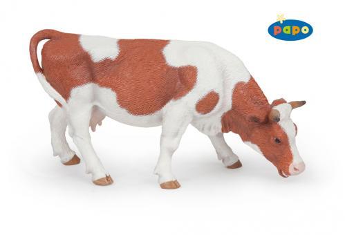 Пасущаяся симментальская корова