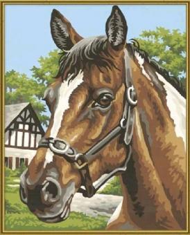 Раскраска по номерам.Лошадь, 24х30 см