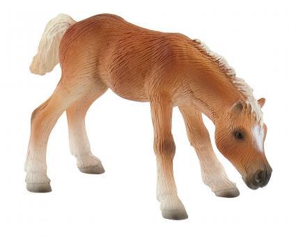 Фигурка Жеребенок породы гафлингер, 13,6 см
