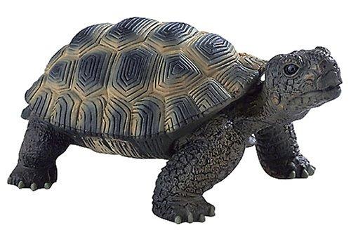 Фигурка Леопардовая черепаха, 13 см