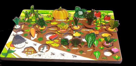 Разивающая доска Овощи на грядке