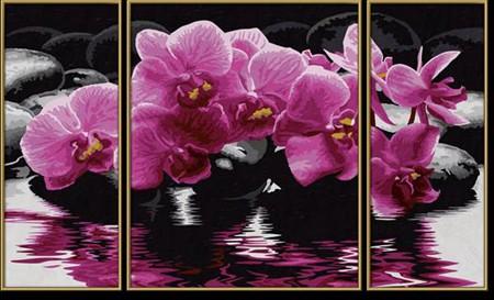Раскраска по номерам. Триптих Орхидеи, 50*80 см