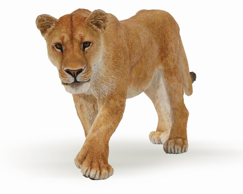 Картинка львицы для детей